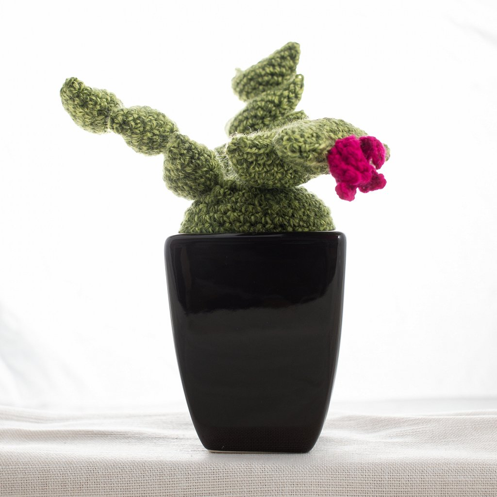 Knitted cactus